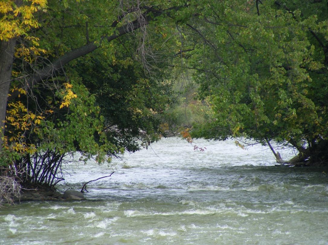 river-1184081_1920